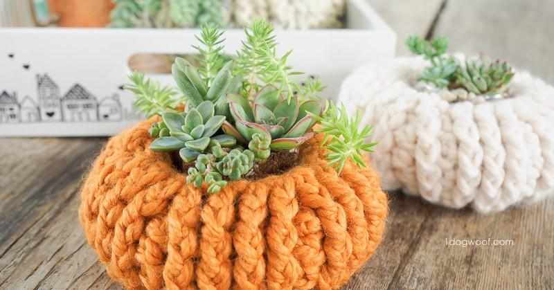 Succulent Pumpkin Planter free crochet pattern by 1 Dog Woof