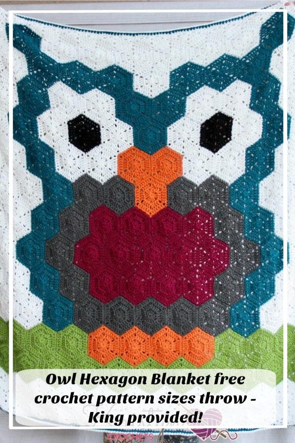Owl Hexagon Blanket a free crochet pattern
