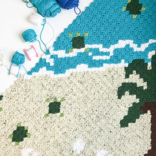 Sea Turtle C2C Blanket Flat square