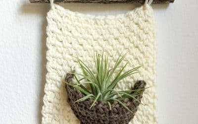 Crochet Air Plant Wall Hanger free crochet pattern