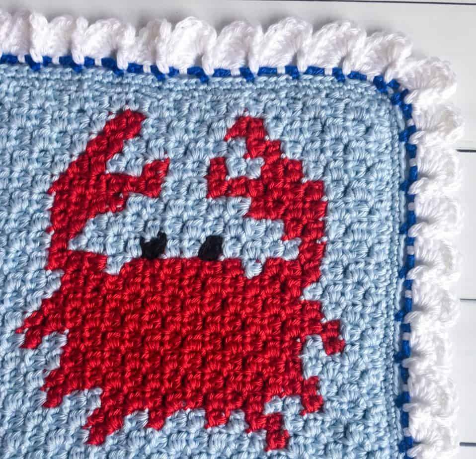 Sea Life Crochet Blanket Border