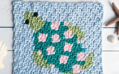 Crochet Turtle Pattern free C2C Graph